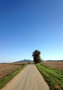 Der Weg-crop