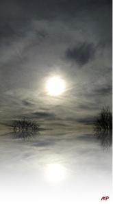 Sonne_08.02.14-crop