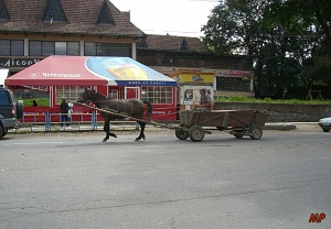 Pferdearbeit1
